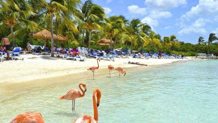 #Aruba tiene unas playas preciosas y puedes conocerlas si viajas con #Despegar #trip #turismo #viajar #playas