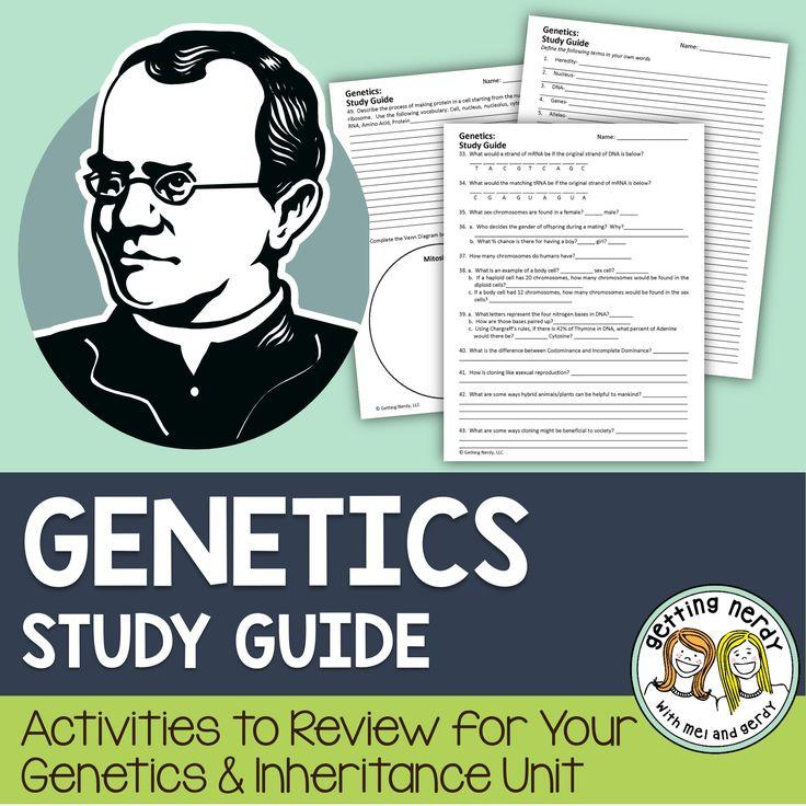 genetics study guide general biology Flashcards ... - Quizlet