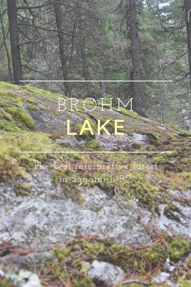 Brohm Lake Interpretive Forest near Squamish, BC, is education and beautiful. Read more!