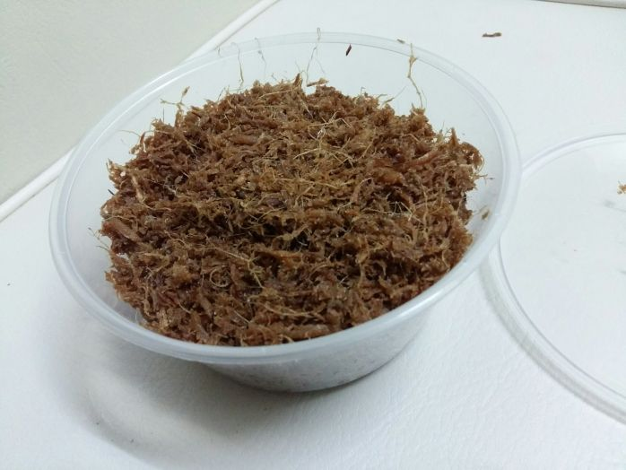 Serunding Halia Asian Recipes How To Dry Basil Food