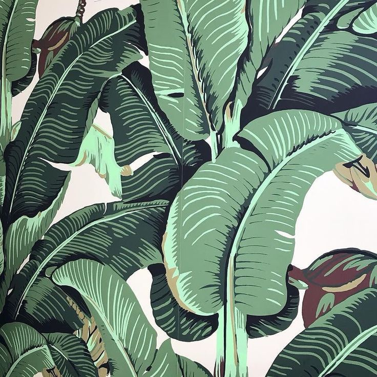 Our iconic collection of the Beverly Hills Martinique Wallpaper and Fabric exclusively at DesignerWallcoverings.com