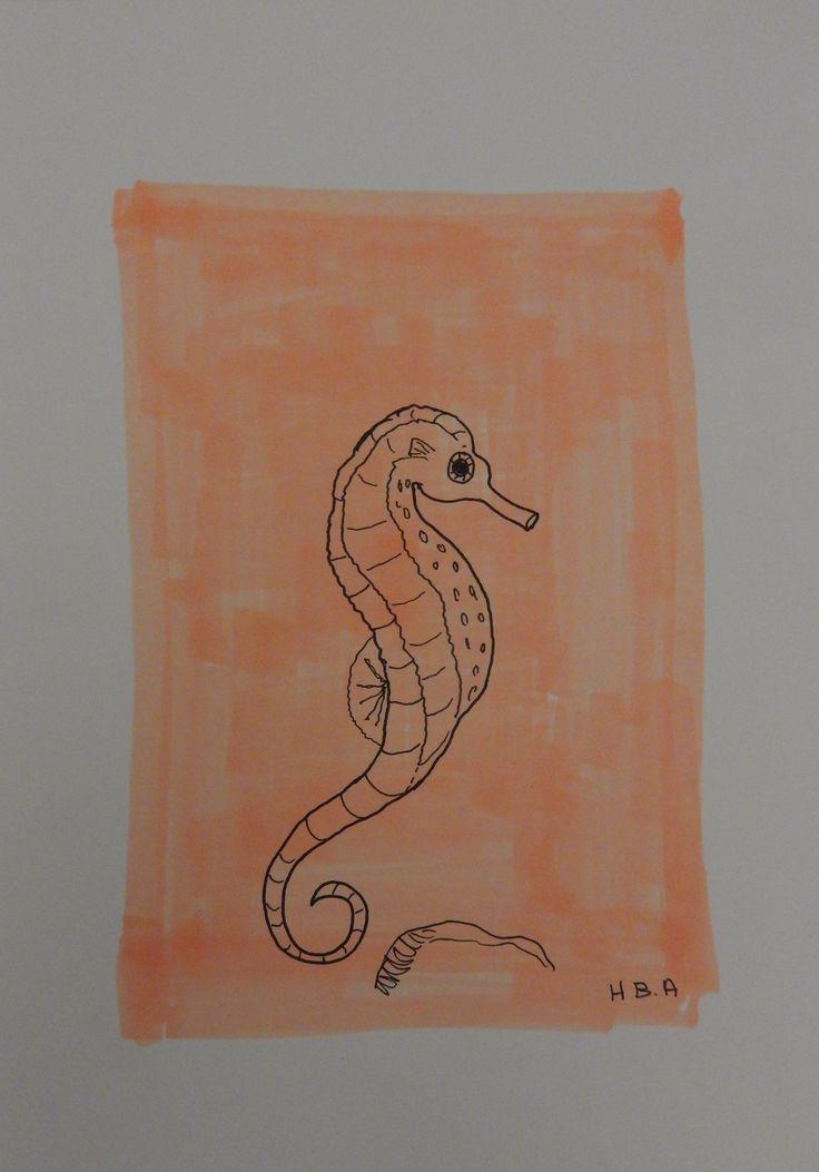 Søhest/ Seahorse