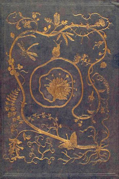 Gilt decorated book cover