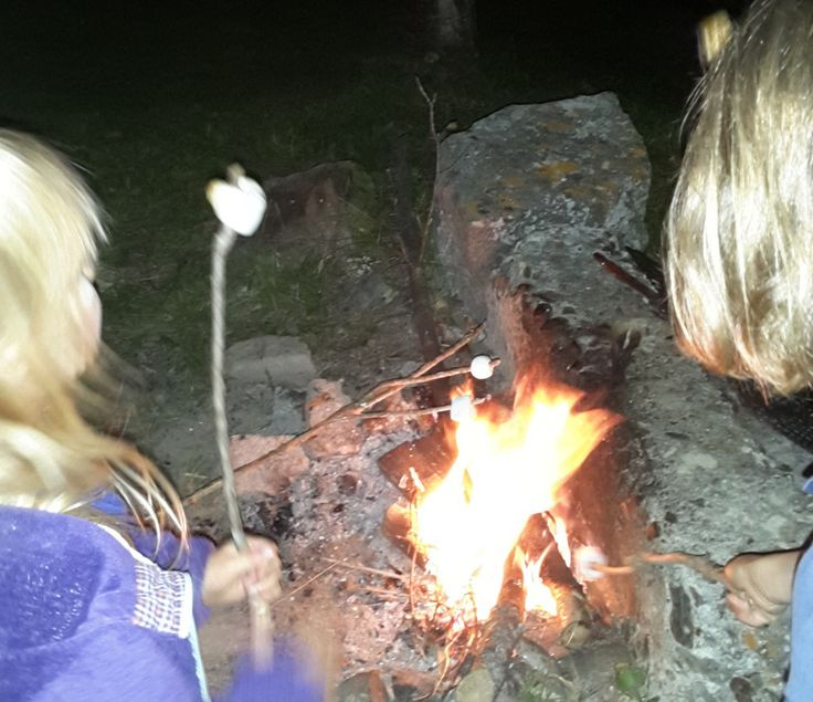 Comment griller les marshmallows