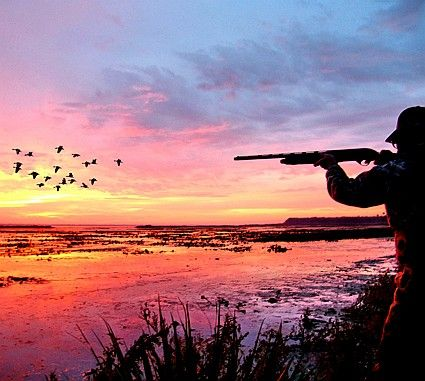 This is an article from Florida Sportsman about pass-shooting tactics for Florida duck hunting.