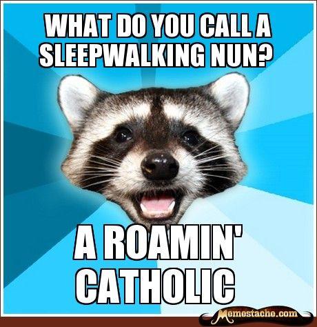 Lame Pun Coon. #humor #catholic #funny