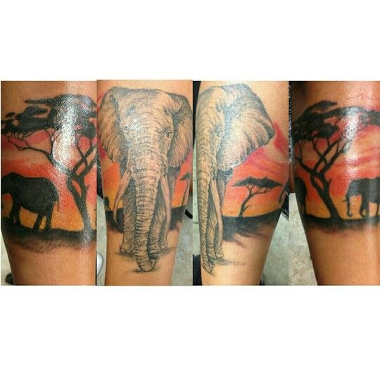 Color tattoo arm tattoo elephant tattoo africa back ground tattoo