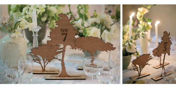 Daneel & Adri Wedding