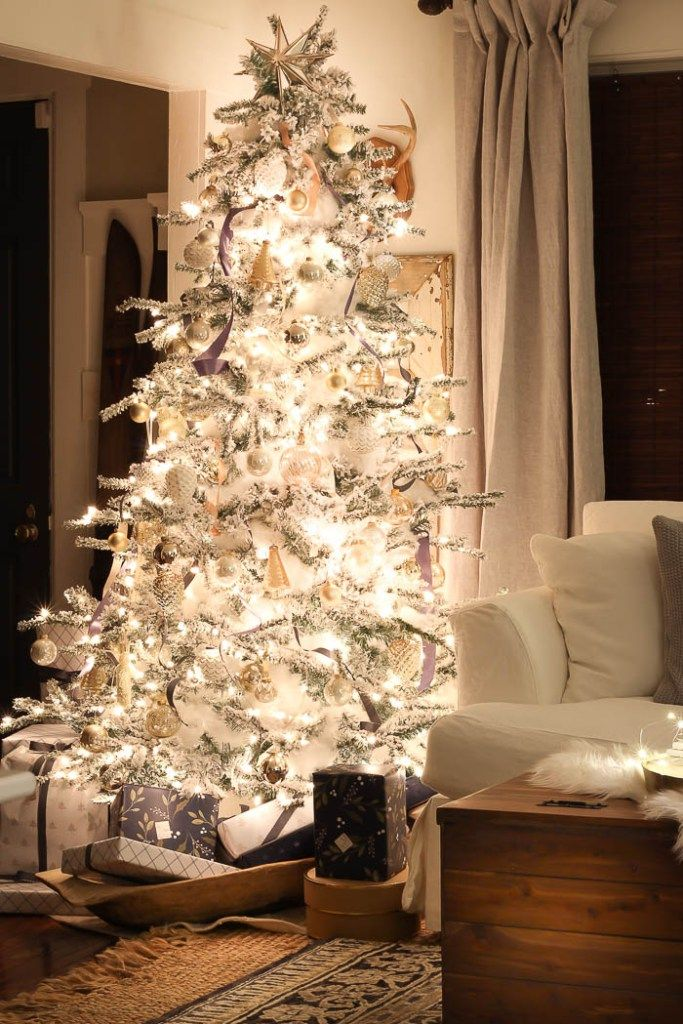christmas lights night tour rooms for rent blog - Rent A Christmas Tree