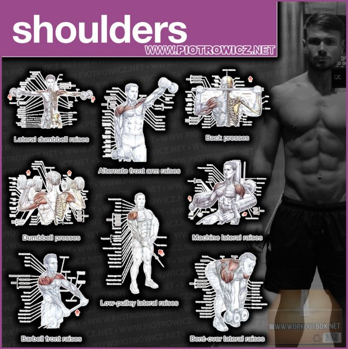 Shoulders Workout Exercises - Best Training Piotrowicz Fitness !