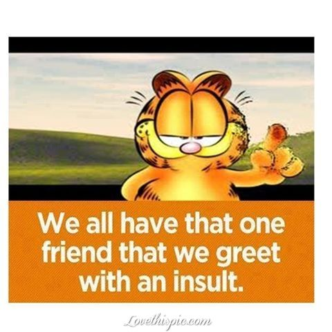 That One Friend Funny Quotes Friendship Quote Cartoons Friend Garfield Friendship  Quote Friendship Quotes Funny Quote Funny Quotes