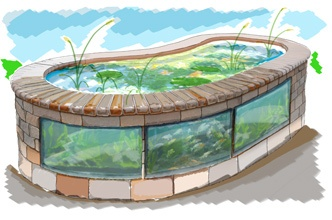 raised wooden/windowed pond concept
