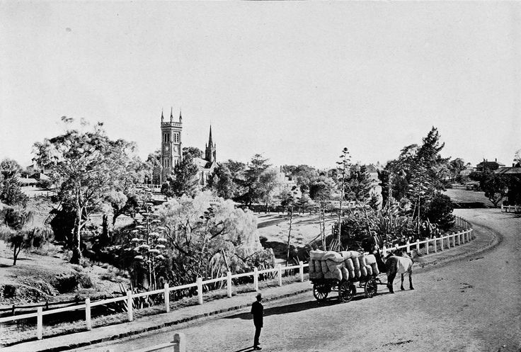 Country Road at Strathalbyn, South Australia c. 1908