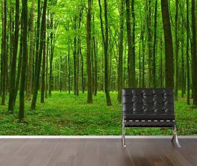 Vlies fotobehang Groene Bomen - Bomen behang | Muurmode.nl