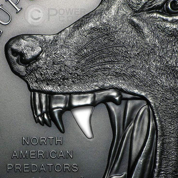 CANIS LUPUS Gray Wolf North American Predators Silver Coin 10$ Cook Islands 2015