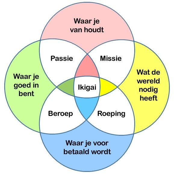 Ikigai (Nederlands)