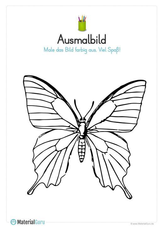 Ausmalbild Schmetterling Einschulung Schmetterling Ausmalen