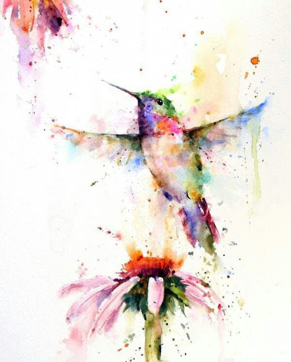 watercolor hummingbird - unknown