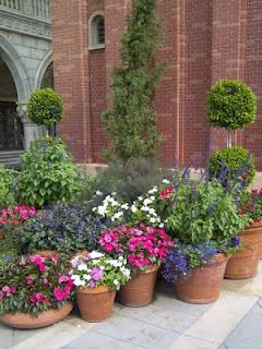 10 Container Gardening Ideas.  Container Gardens look great on a back patio or deck