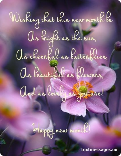 An image with flowers and new month wishes.
