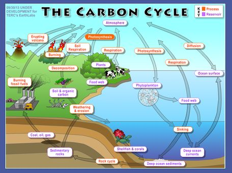 Climate and the Carbon Cycle
