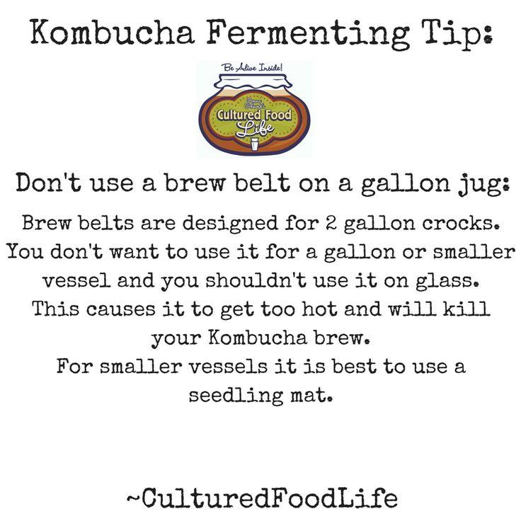 how to make kombucha culture