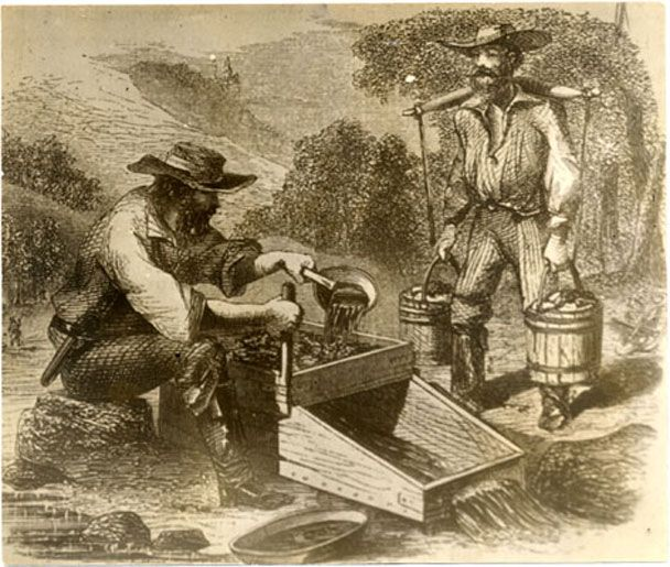 Gold And Silver Mining In Panama Mail: 17 Best Images About Tasmanian Gold Rush On Pinterest