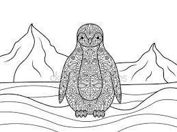 Výsledek obrázku pro omalovánky polárních zvířat