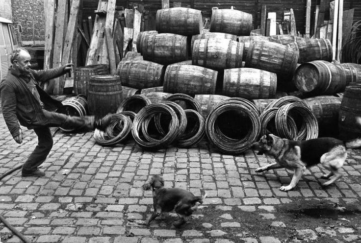 Robert Doisneau // Wine - Fanton a Bercy Octobre,1974.
