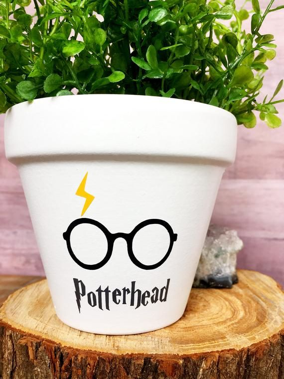 The Original Potterhead Pot Potterhead Harry Potter Gift Etsy Harry Potter Themed Gifts Harry Potter Gifts Harry Potter Decor