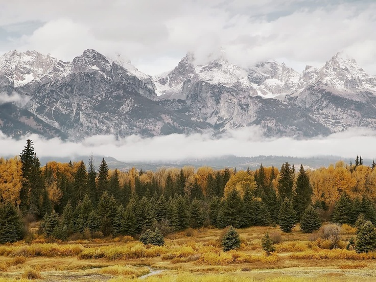 Mountains in the Mist, Grand Teton National Park, Wyoming