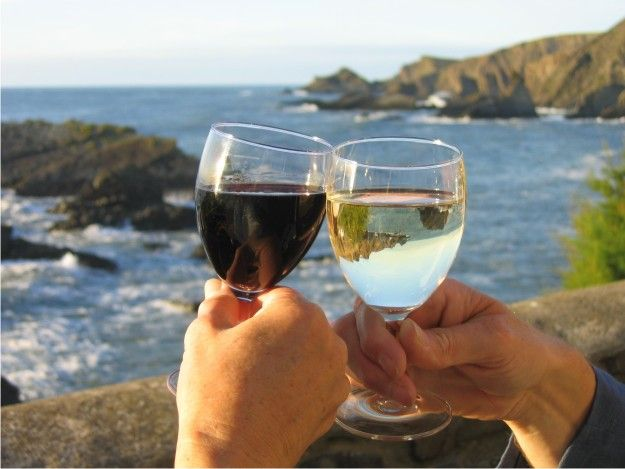 Waiheke Island's fine time for wine