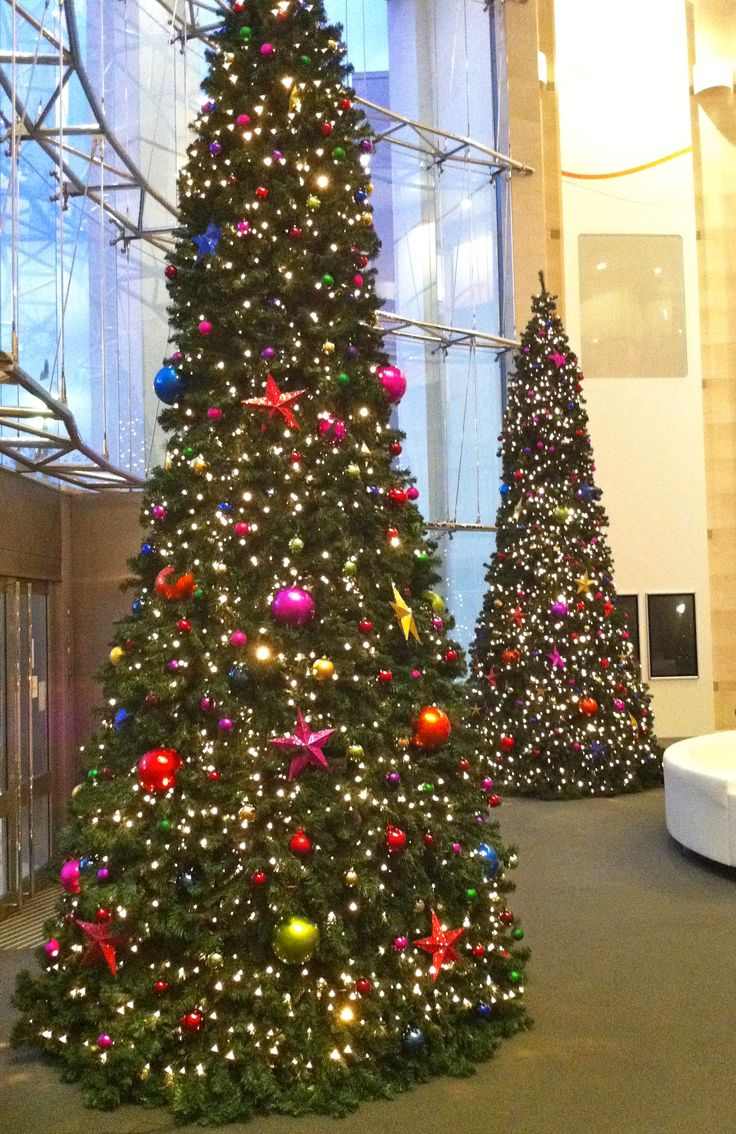 pair of 20ft decorated artificial christmas trees in reception of office building - 20 Ft Christmas Tree