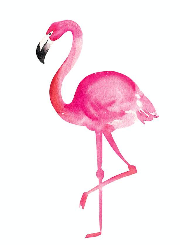 легкие рисунки розового цвета