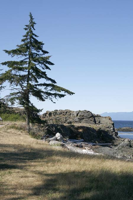 Neck Point Park, Nanaimo, BC...nice place for walking.