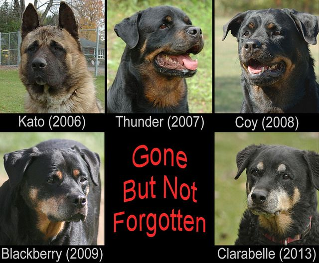 April in Years Past - Gone but not Forgotten