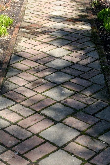 brick_walkway-- gorgeous pattern!