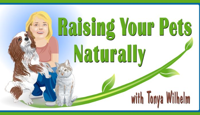 Press Release: Raising Your Pets Naturally with Tonya Wilhelm website launch. Please feel free to share the love. :)