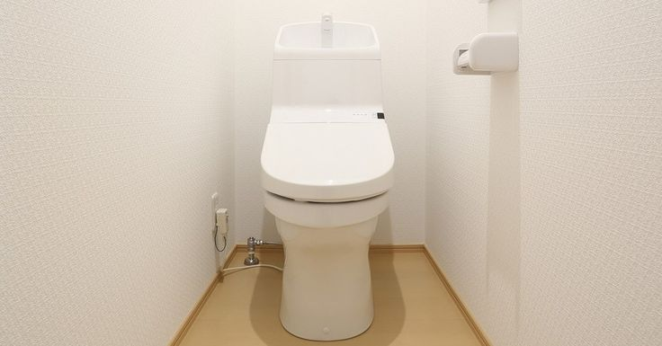 日本人の「トイレ」へのこだわりは、国際的にみても特徴的なものであるようです。日本発のヒット商品「ウォシュレット」は今や世界中で使われていますし、便座カバー、ペーパーカバーなどのこだわりは突出したものがあります。