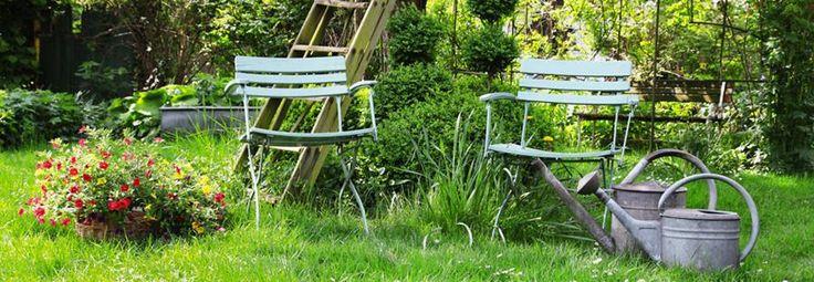 Maak van je tuin een natuurgebied