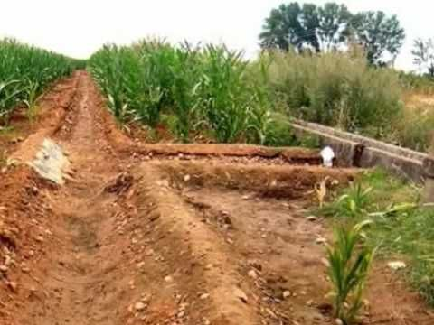 an analysis of the lessons of traditional irrigation In this lesson, we will learn about traditional economies we will define the term, look at both advantages and disadvantages, and apply the.