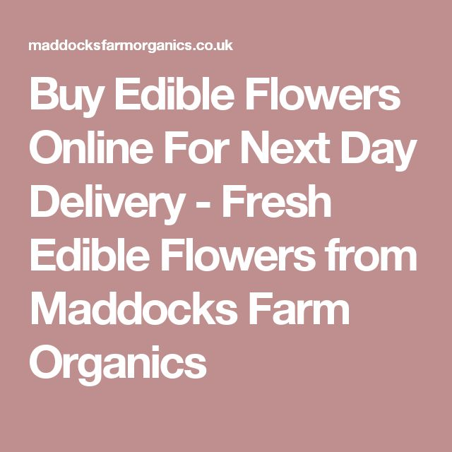 Buy Edible Flowers Online For Next Day Delivery - Fresh Edible Flowers from Maddocks Farm Organics