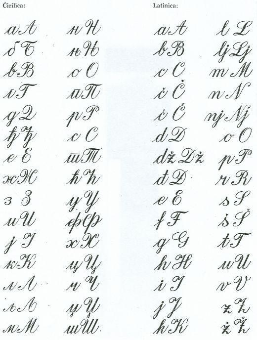 "Serbian Cyrillic and Latin alphabets. Should have seen me ""trying"" to translate!"