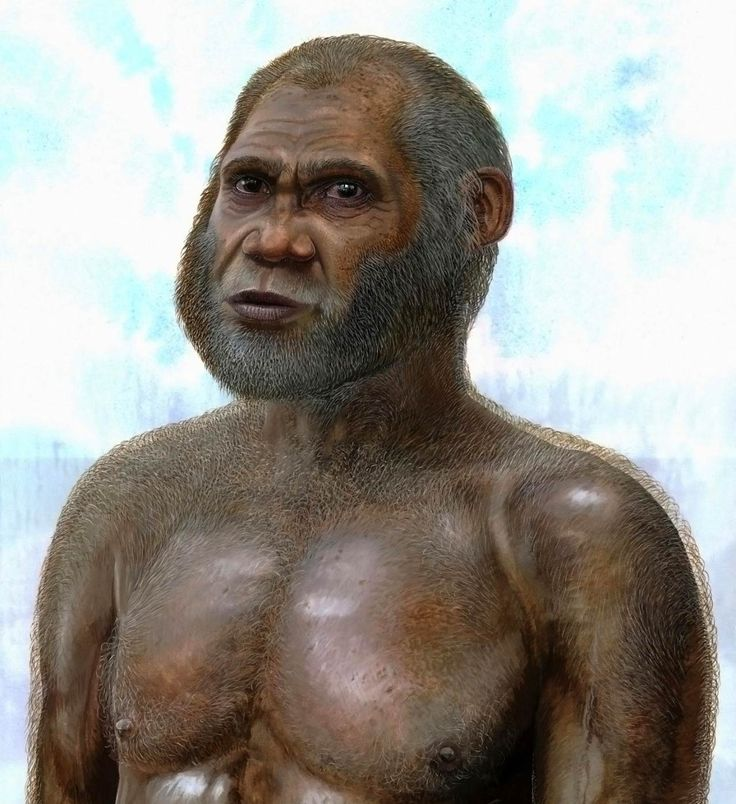 14,000-Year-Old Bone Found in Red Deer Cave Points to Archaic Human Species | Artist's reconstruction of a Red Deer Cave man. Image credit: Peter Schouten.