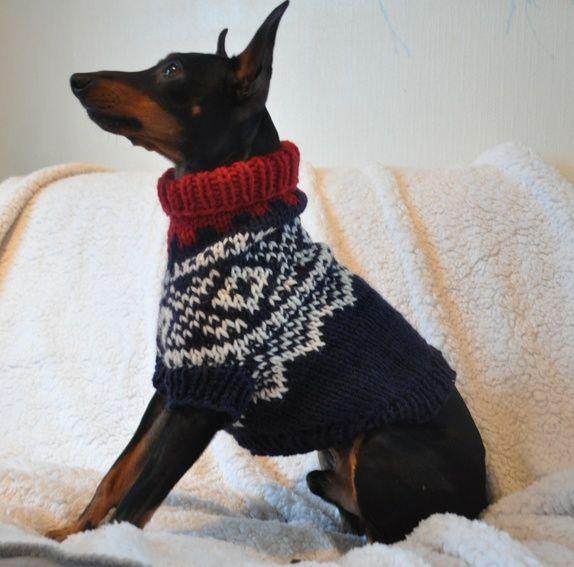 Marius(C)(R)-genser til hund. Str M