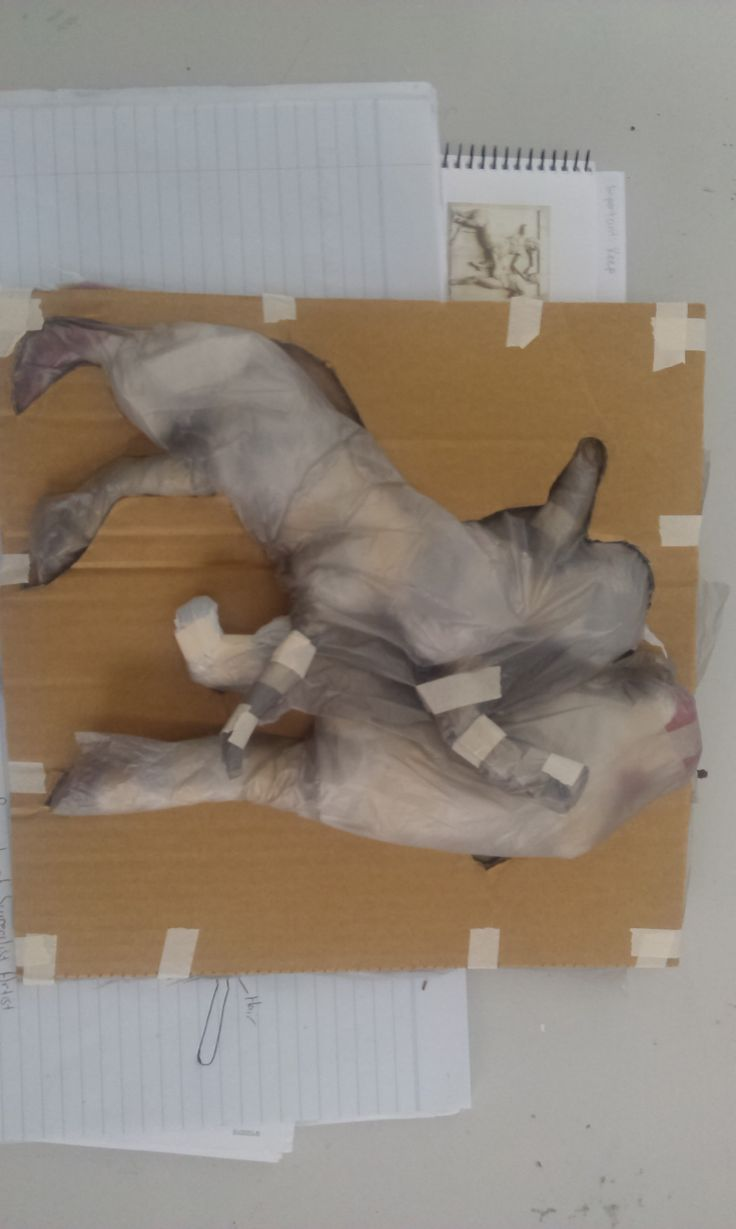 Reconstruction of a Lapith man fighting a centaur using card, plastic bags and masking tape.