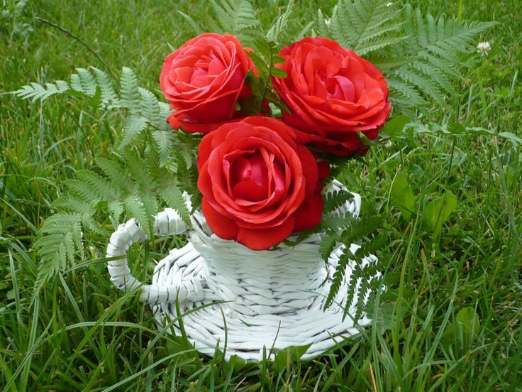 A cup of roses:)