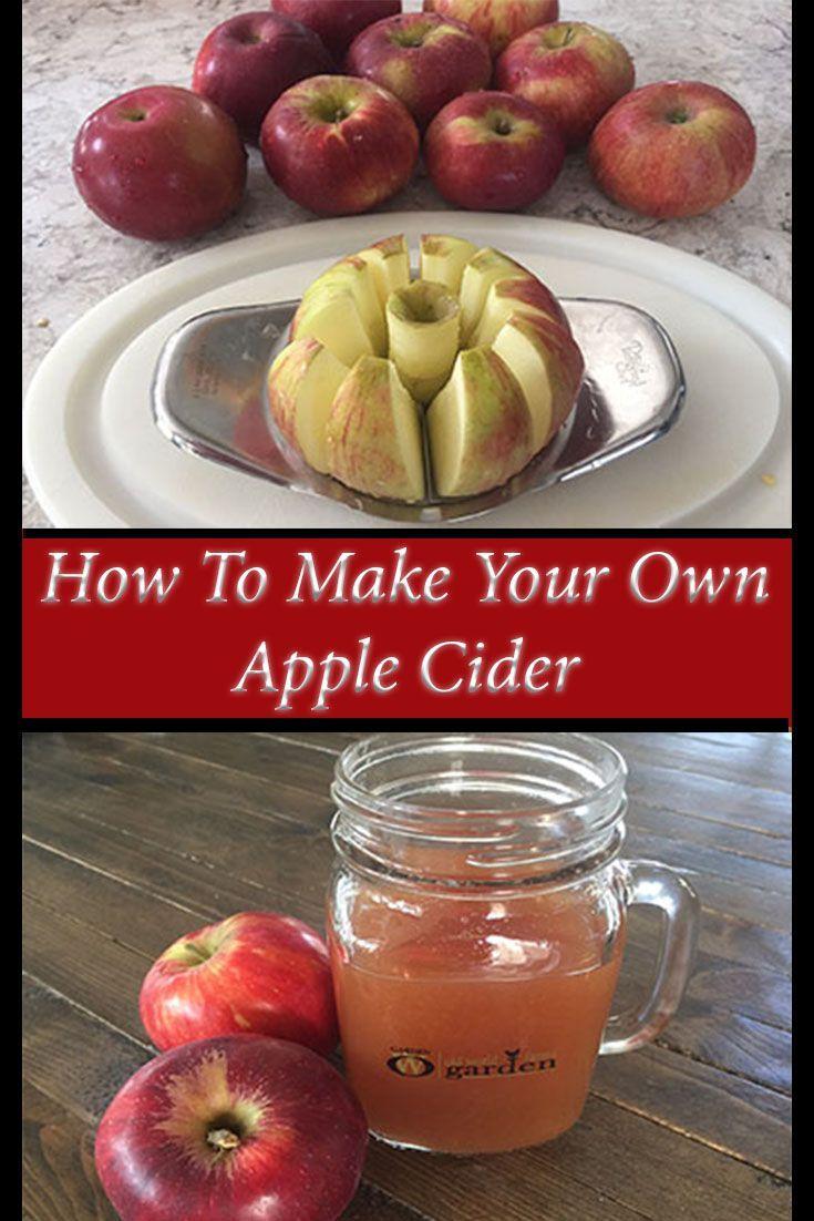 Homemade Apple Cider Recipe Made In Minutes With Just 5 Ingredients Recipe Cider Recipe Apple Cider Recipe Apple Wine Recipes