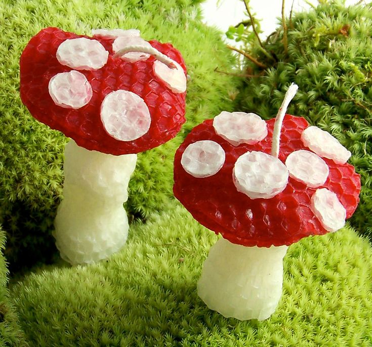 2 Mushroom Candles Handmade Beeswax