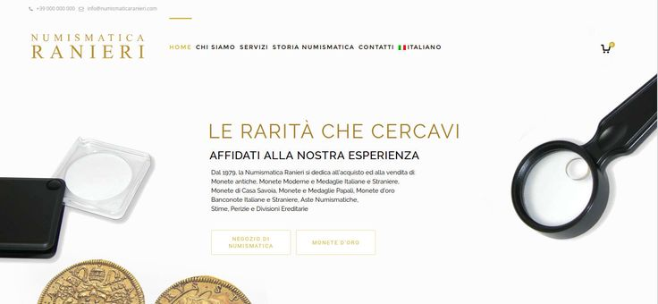 Web Design for numismatica ranieri -  not online